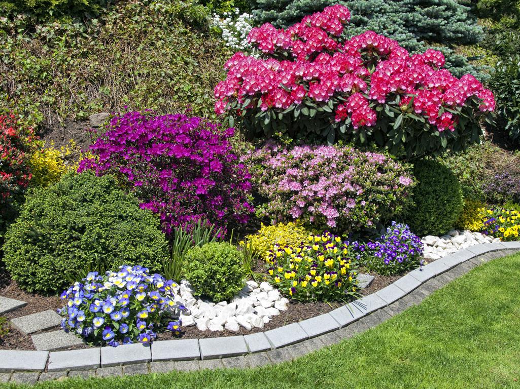 Aiuole giardino: suggerimenti